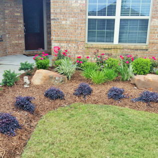 landscape build katy tx
